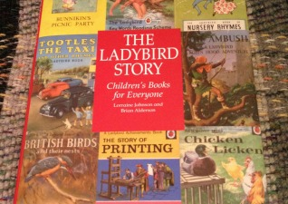 Ther Ladybird Story