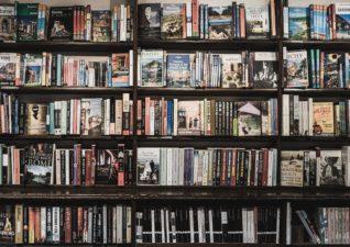 Professional Guide to Writing a Original Book Report